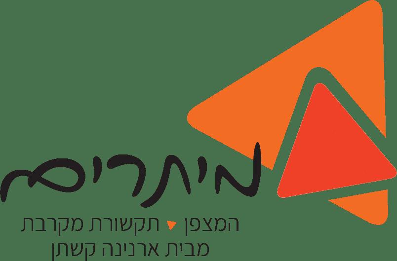 מיתרים לוגו